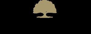 getin-logo4